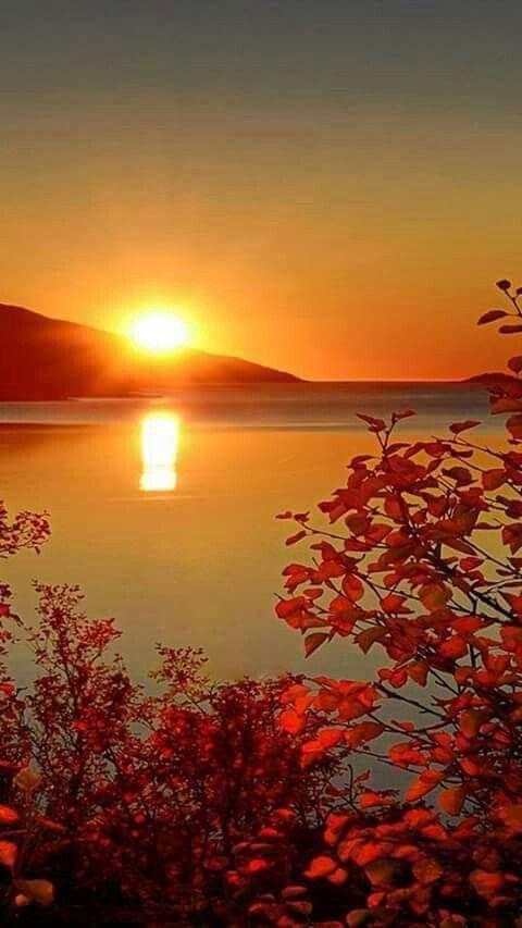 Herfst zon