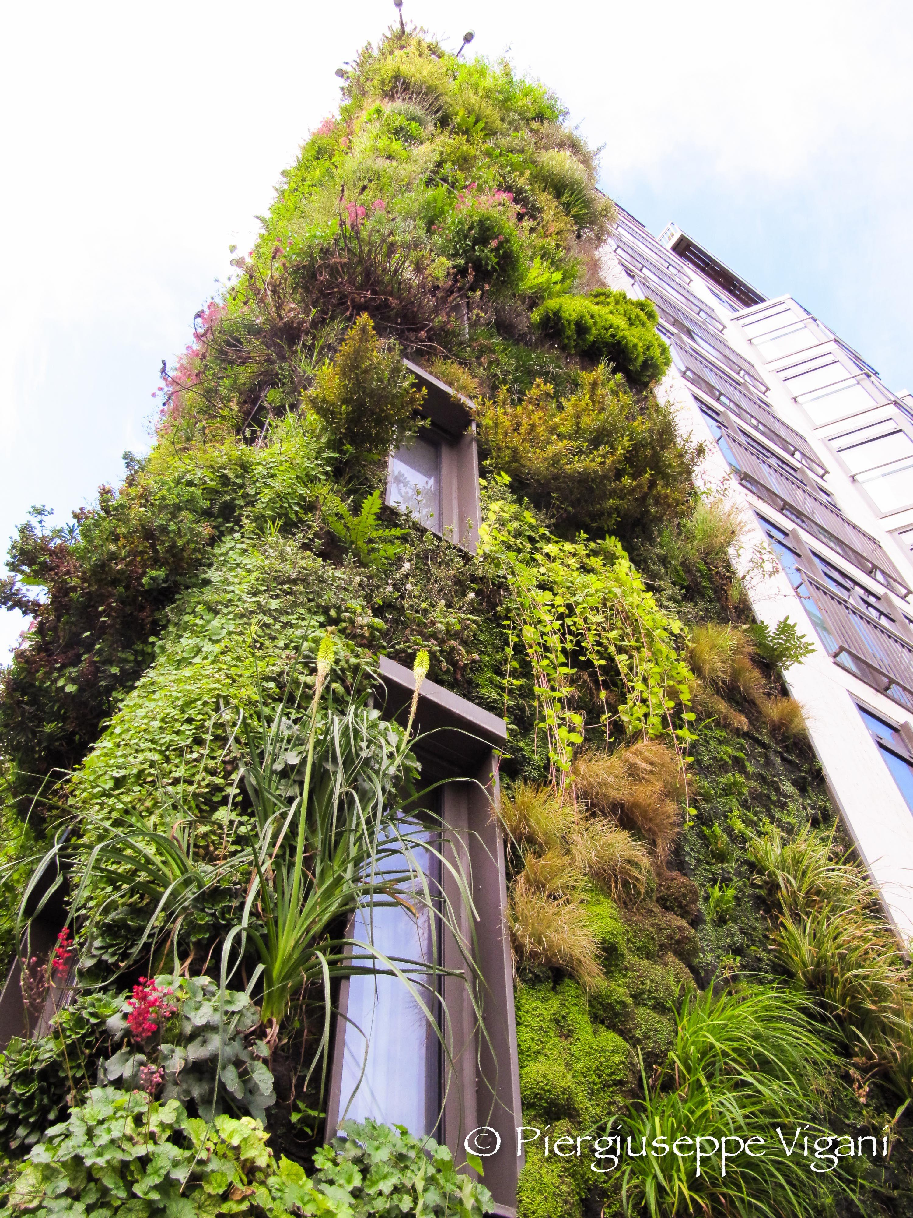 vertical garden, London, Park Lane Vertical garden