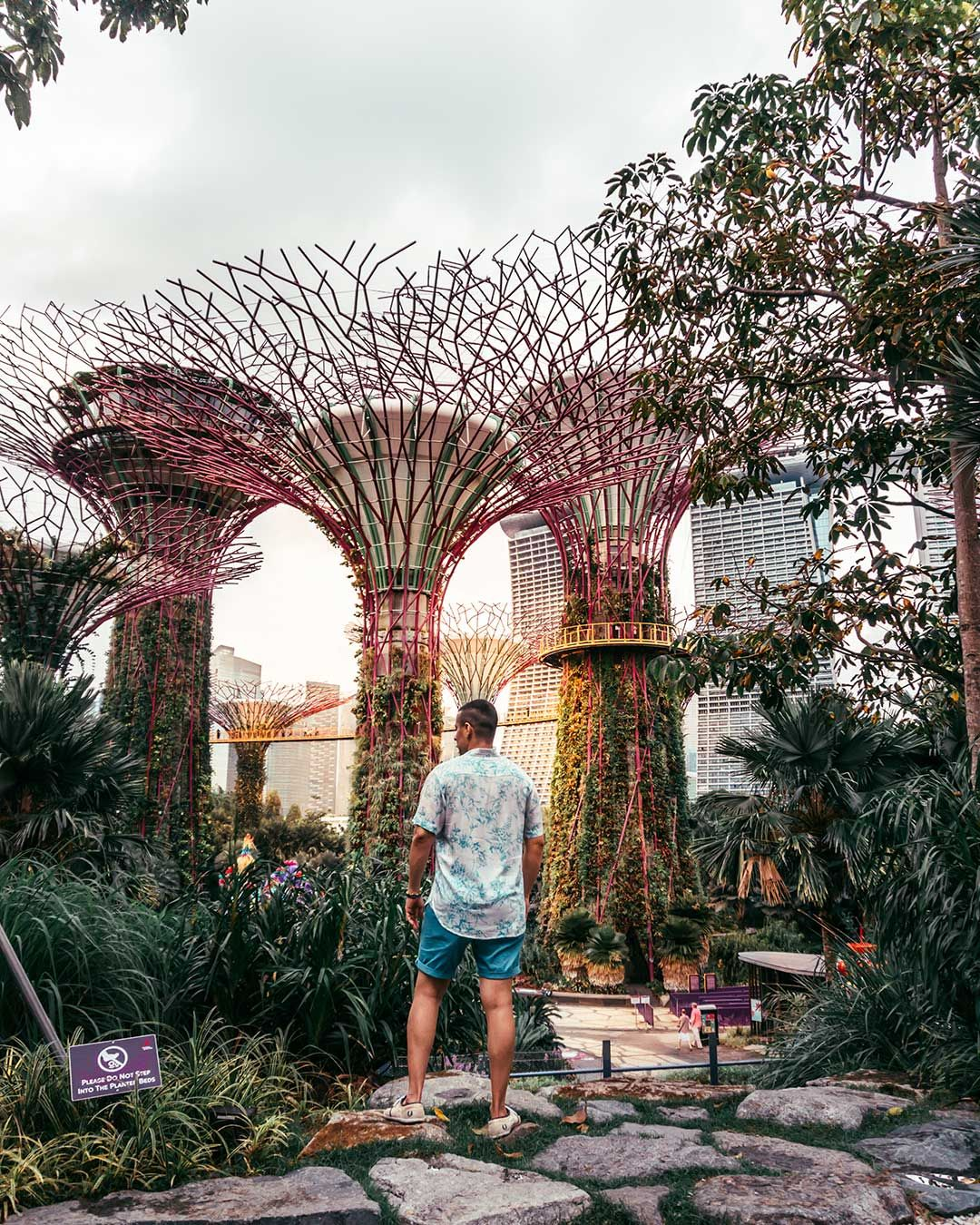 7ef822b71549a280104cade37cc41724 - Free Things To Do At Gardens By The Bay