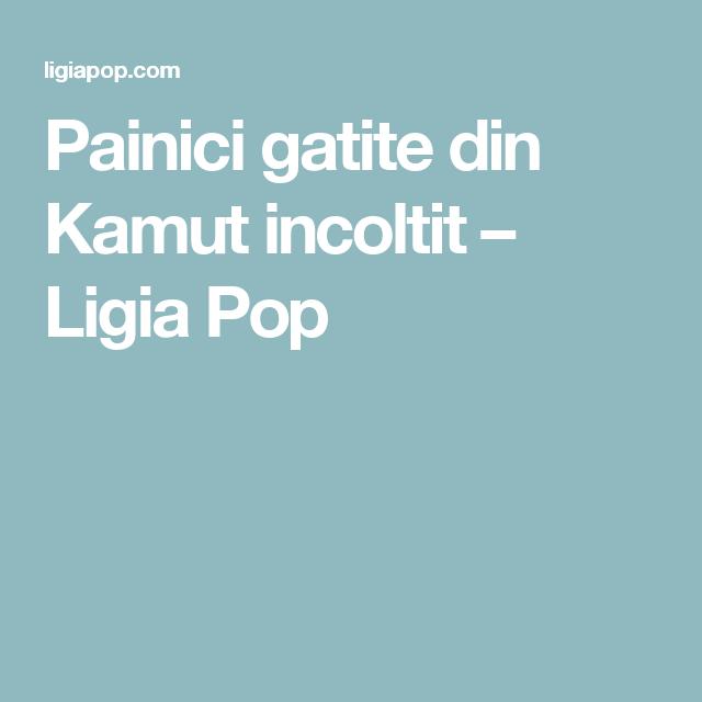 Painici gatite din Kamut incoltit – Ligia Pop