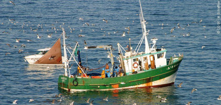 bateau de peche cotiere