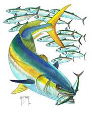 Kingfish Like The Idea Of Something Like This On The Back Of The Utes Without The Bait Fish In The Background Fish Art Fish Drawings Aquatic Art