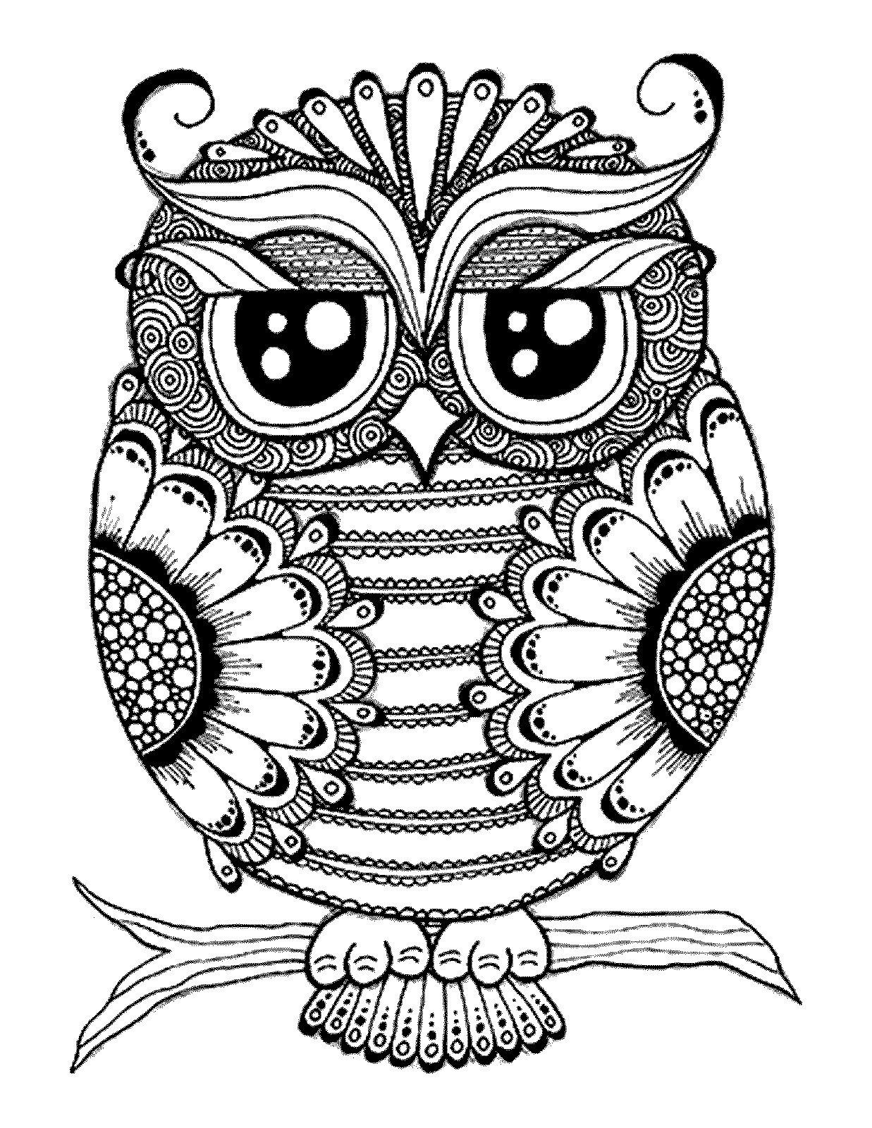Adult Coloring Pages Birds 3