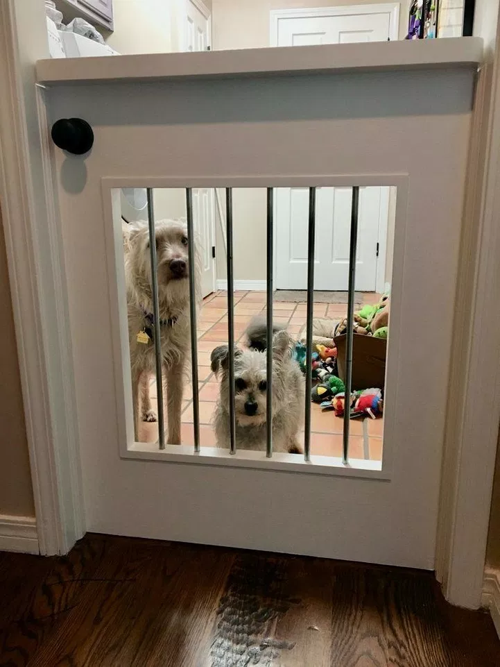 43 Puppy Room Design Idea Housedesign Houseideas Roomdesign Home Design Ideas Animal Room Dog Rooms Diy Dog Stuff
