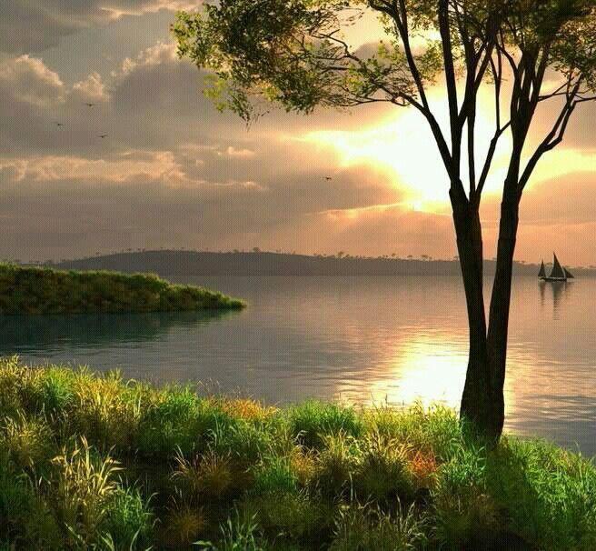 Que paisaje