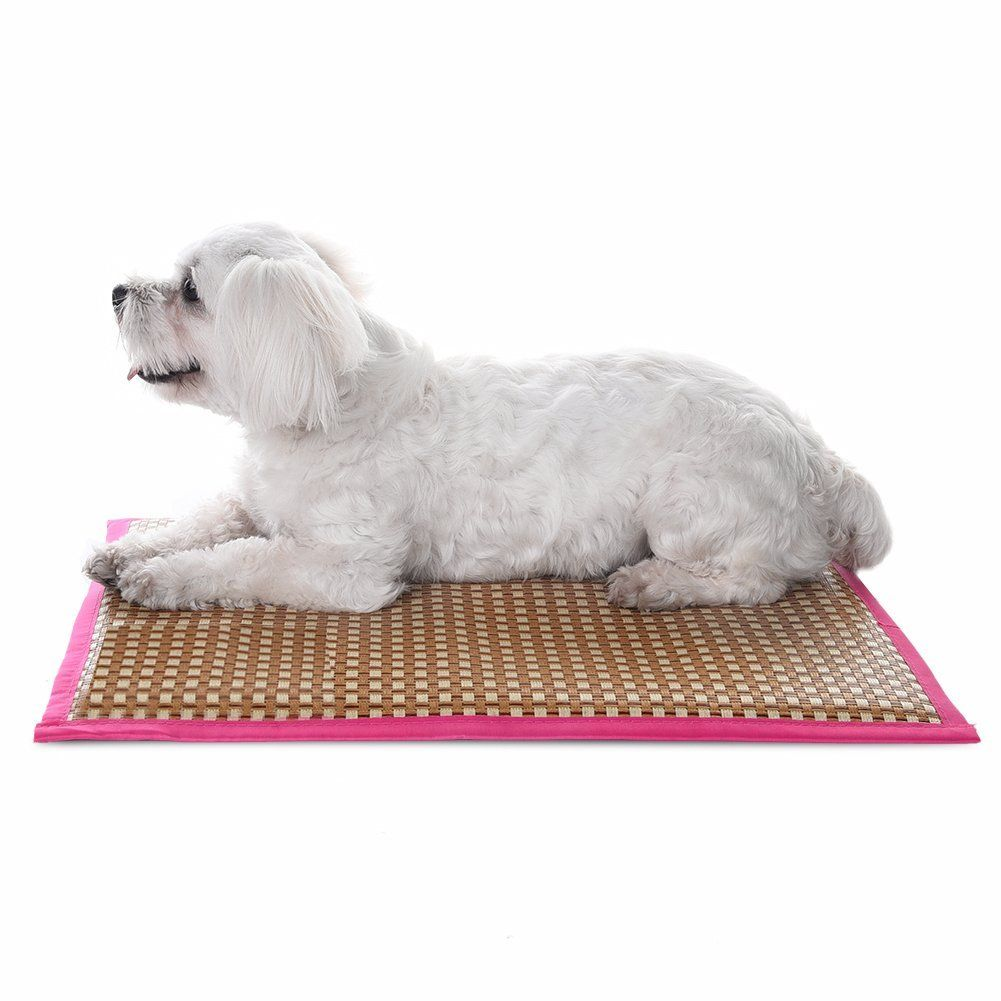 Pet Cooling Mat Puppy Comfort Bed Self Cooling Pad Pet Cooler Cold Bed For Different Sizes Dogs And Cats S M L By Foerteng Pet Cooling Mat Dog Shedding Dog Diapers