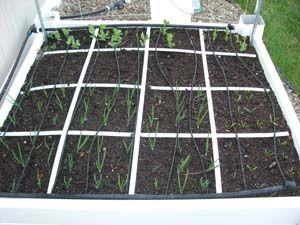 Building A Drip Irrigation System Urbanag Farm Grow Green