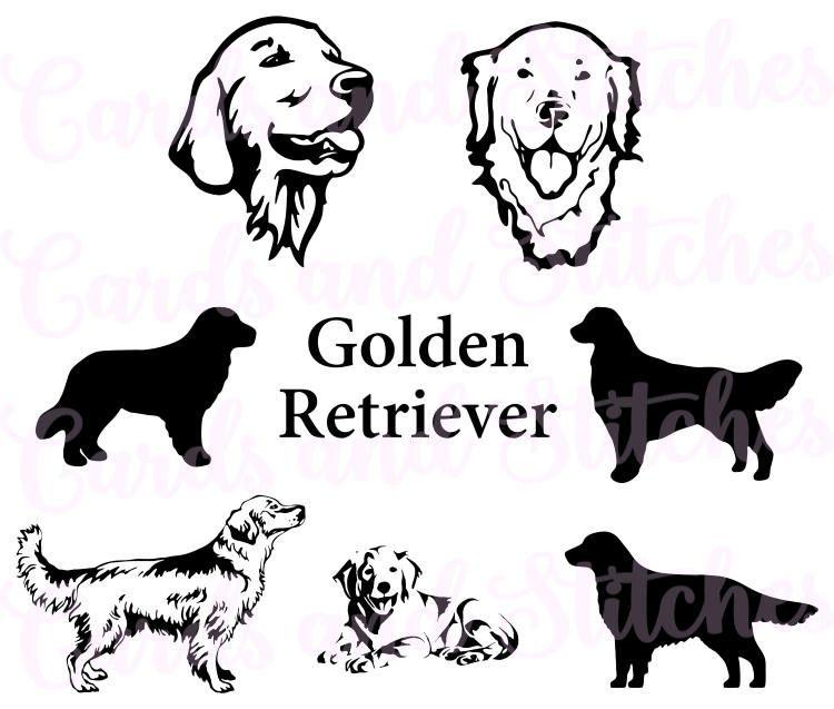 Golden Retriever Clipart Labrador 5 Labrador Art Dog