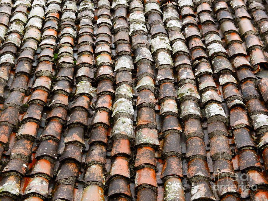 Google Image Result For Http Images Fineartamerica Roof Tilesliving