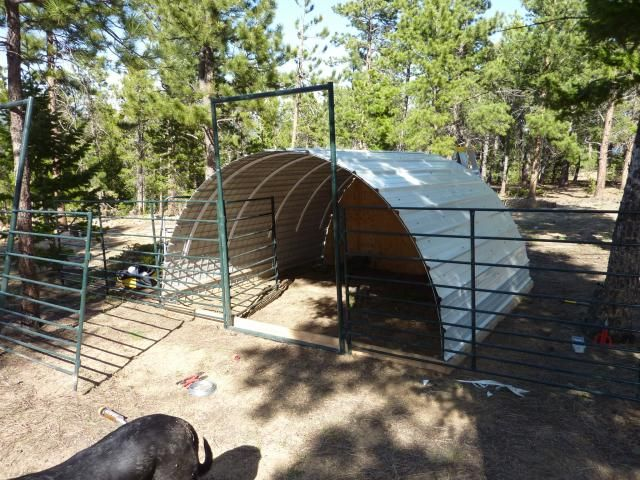 pincorrine richey on goats | pinterest | goats, goat shelter and