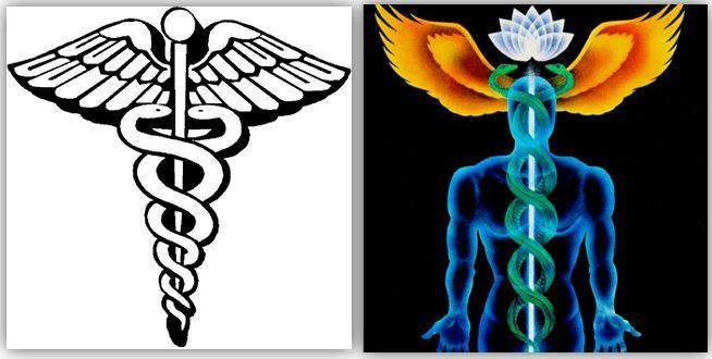 Ancient Secret Symbols Left Sumerian God Marduk With Pine Cone In