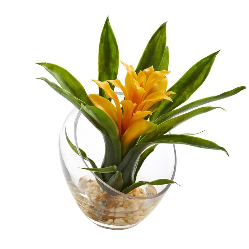 Tropical Bromeliad Floral Arrangement In Vase Painted Vases Vase Vase Arrangements