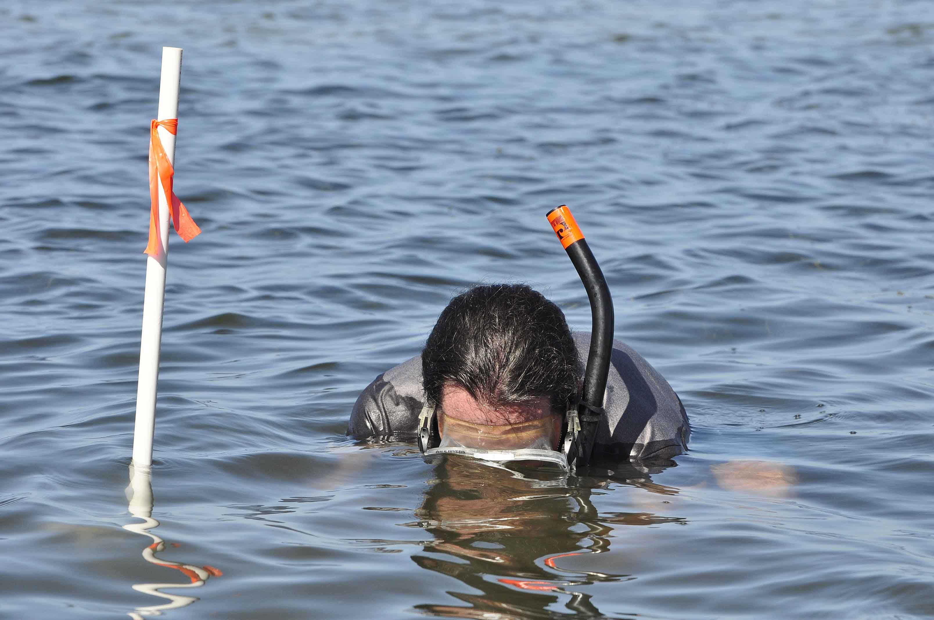 Hillsborough County S John Mcgee Getting Immersed In The