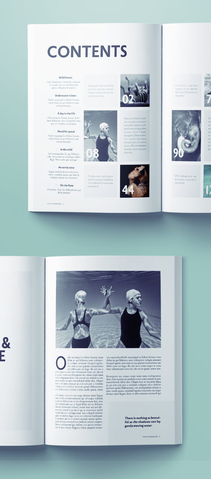 Stunning Photography Magazine Template for InDesign | Free Download