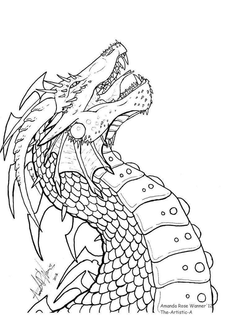 dragon head cute dragons to color