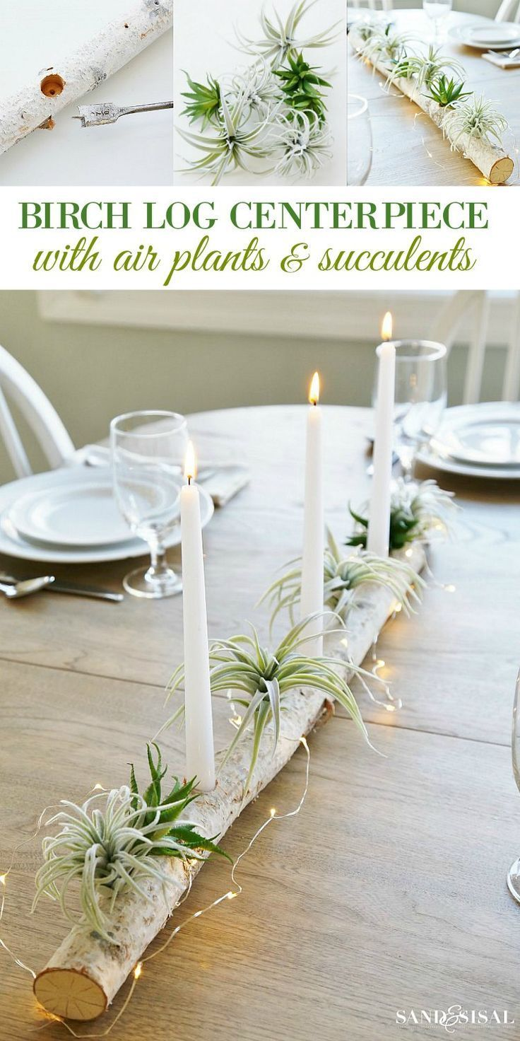 Birch Log Centerpiece with Air Plants and Succulents - Sand and Sisal