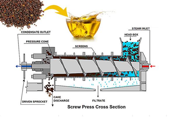 Yzyx Series Oil Press Machine Expeller Honest Industrial How To Make Oil Press Machine Oils