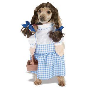 Rubies Dorothy Pet Costume Petsmart Dorothy Dog Costume Pet