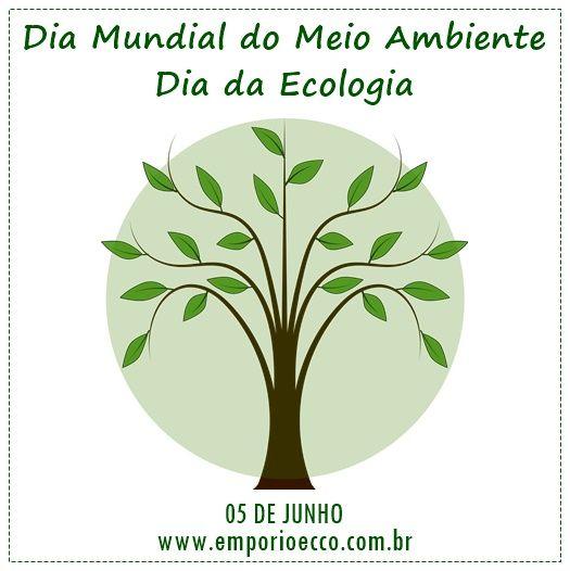 No Dia 05 De Junho E Comemorado O Dia Mundial Do Meio Ambiente E O