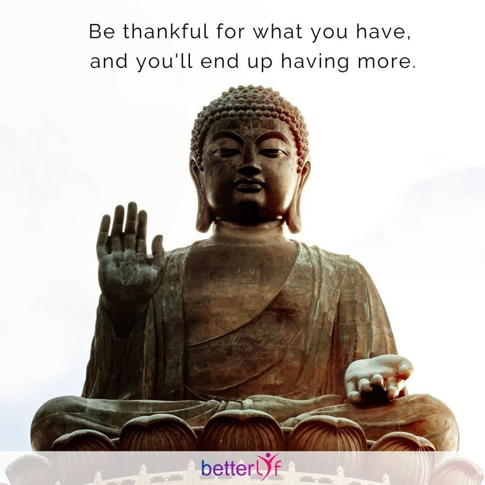 Gratitude helps us to See More on our Plate #anxietyhustle Gratitude helps us to see more on our plate.  Reach out on +919266626435 or chat on BetterLYF.com  #inspirational #inspiration #motivation #inspirationalquotes #motivational #love #motivationalquotes #quotes #success #inspire #quoteoftheday #life #entrepreneur #quote #instagood #positivity #lifequotes #quotestoliveby #goals #positive #happy #happiness #betterlyf #mentalhealth #therapy #depression #anxiety #relationships #hustle #personal #anxietyhustle