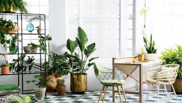 Die besten Ideen zum Dekorieren mit Pflanzen Interior Design Haus - Pflanzen Deko Wohnzimmer