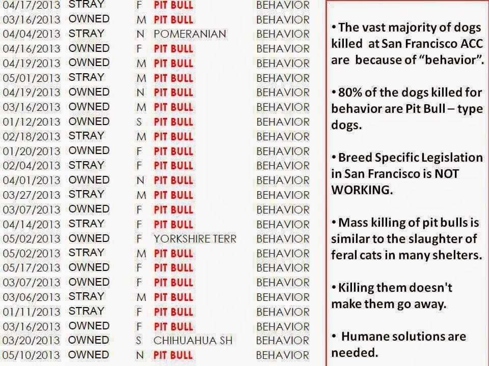 San Francisco Pays Out Big Bucks To Kill Pit Bulls American