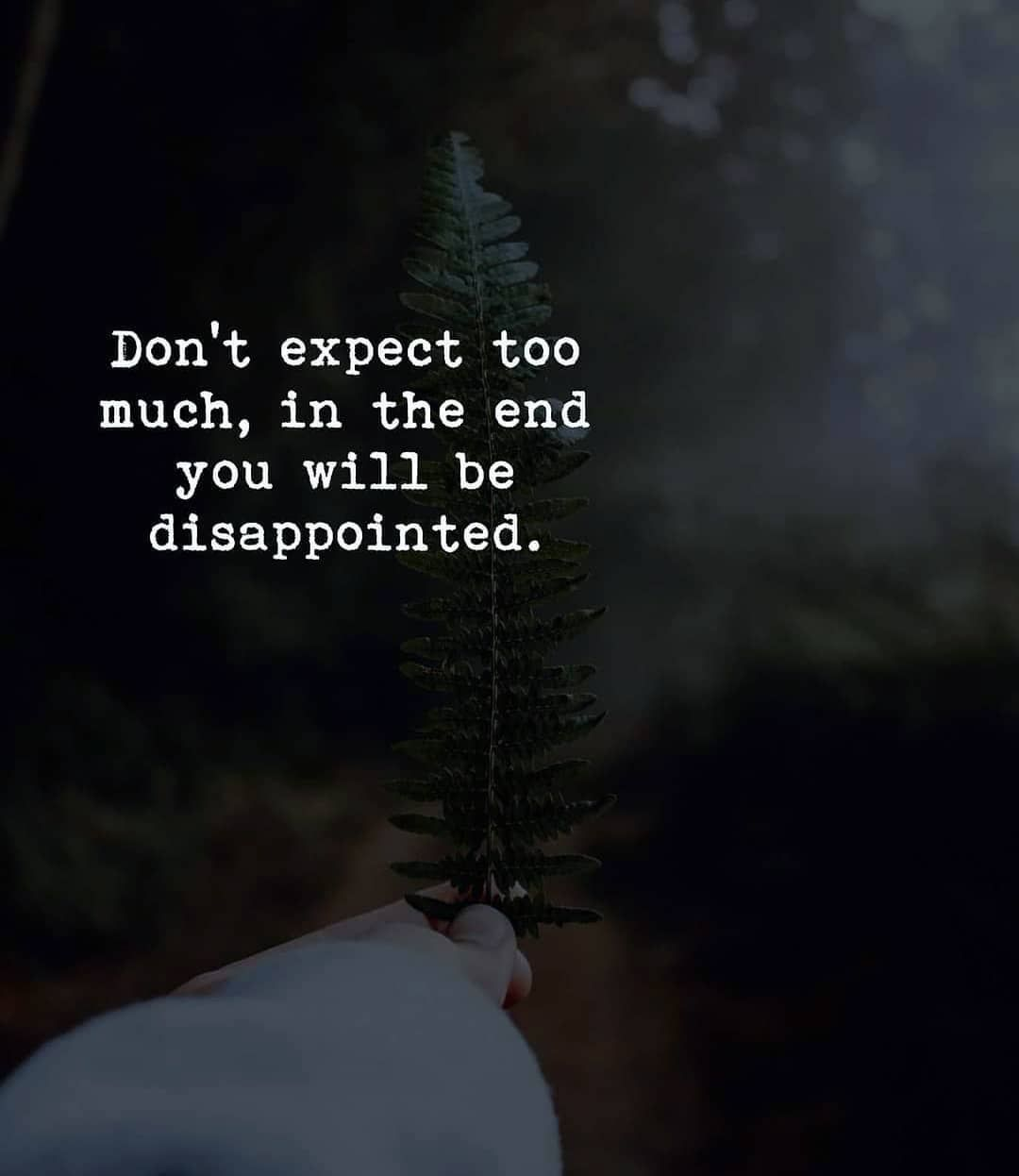 Don T Expect Too Much In The End You Will Be Disappointed Expectation Quotes Dont Expect Too Much Quotes Deep Feelings