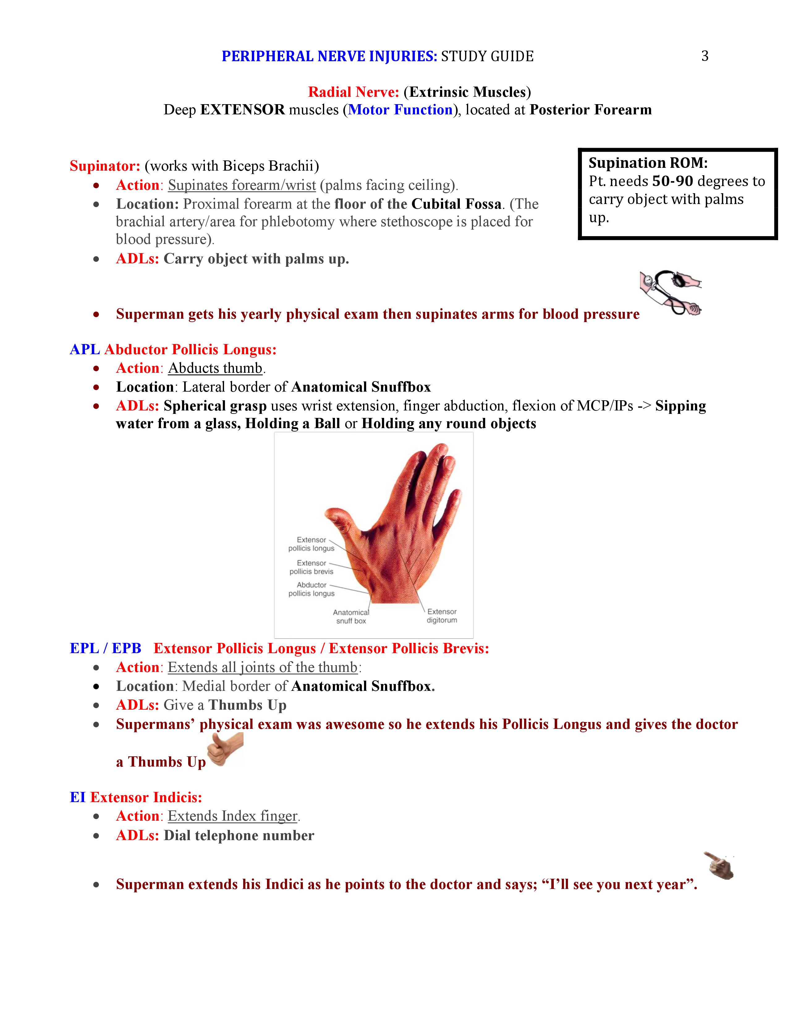 Practice Tests - NBCOT