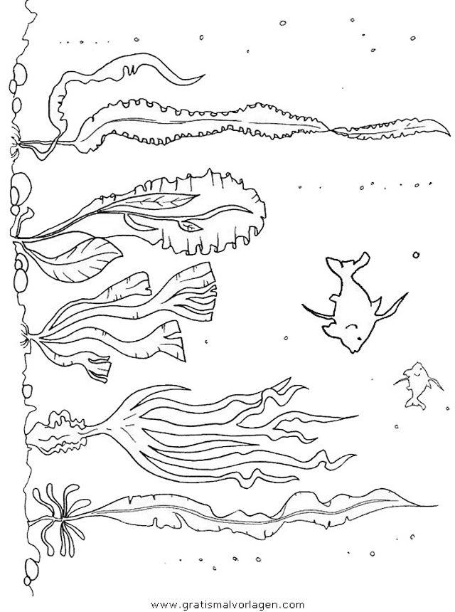 Tiere Fische Verschiedene Fische 100 Jpg Korallenriff Kunst Ausmalen Ausmalen Fur Kinder