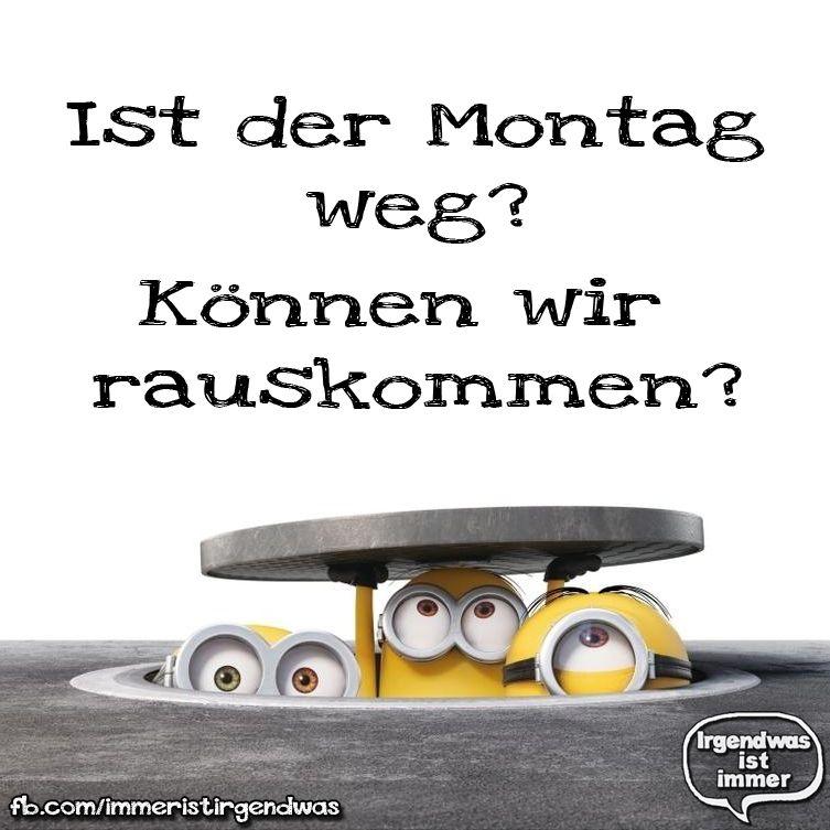 Lustig - Humor - Sprüche - Ironie - Fun - Funny - Witzig ...