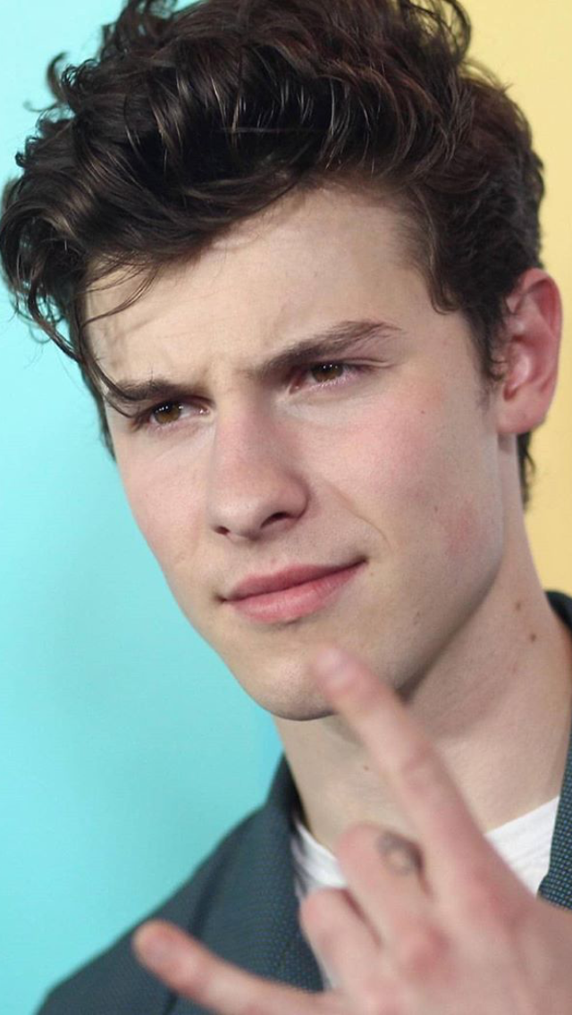 Pin By Hannah Roche On Shawn Peter Raul Mendes Shawn Mendes Funny Shawn Mendes Shawn