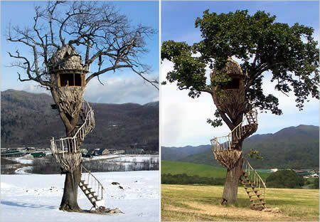 COOL HUNTING STAND TREE HOUSES