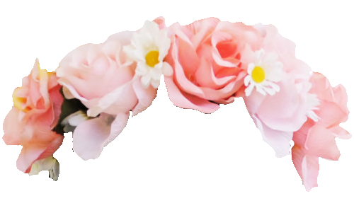 Aesthetic Flower Crown Png Transparent Flowers Flower Crown Drawing Snapchat Flower Crown