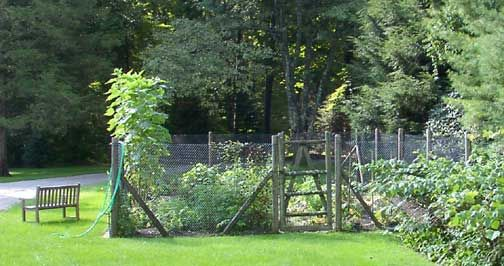 images about deer fencing on   gardens, at the top, vegetable garden deer fence designs, vegetable garden fence ideas deer