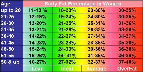 Body Fat Percentage  Chart Showing Healthy Body Fat Percentages