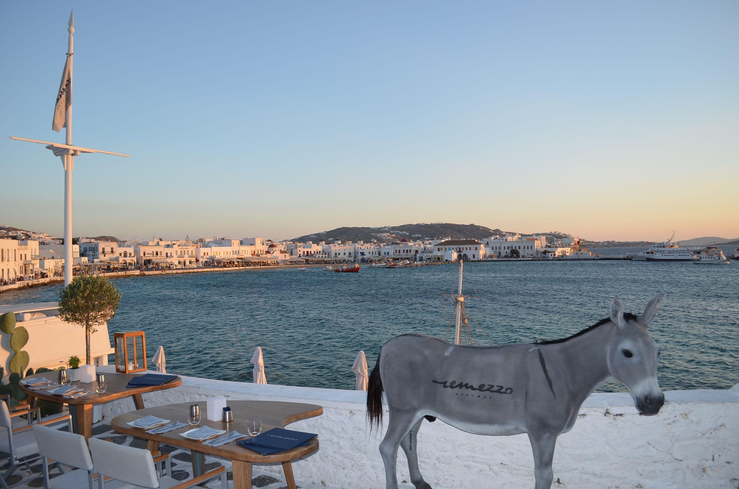 Fun Things To Do in Mykonos Island Greece Greece Pinterest