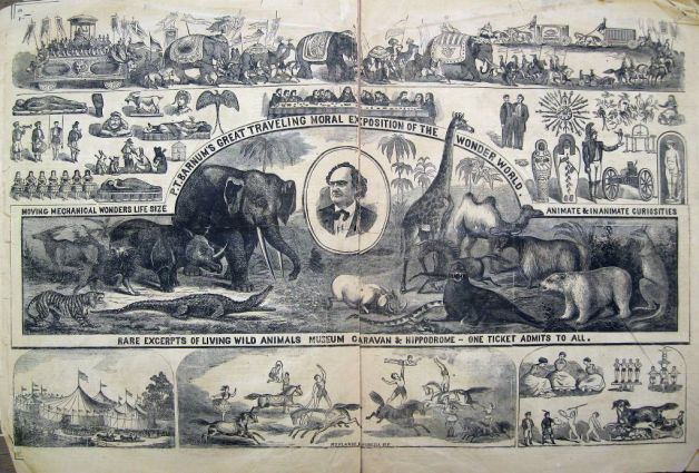 P T Barnum Master Of Advertising And Promotion Circu Poster African Bush Elephant A Dissertation Upon Roast Pig Summary