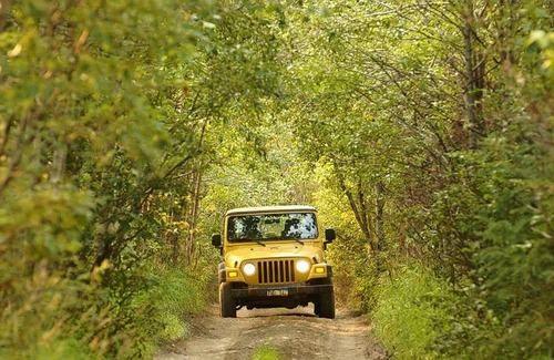 Places To Visit In Jaipur Tourist Places Shore Excursions