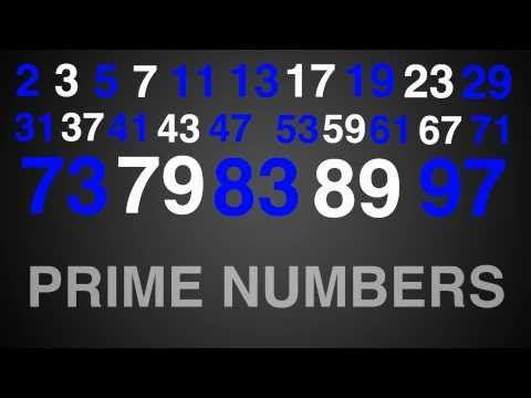 Prime Numbers Rap Song Typography Math  Prime Numbers Number