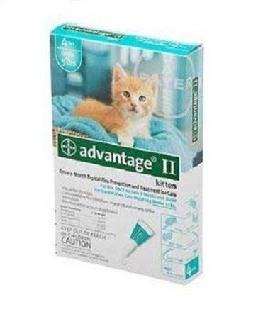 Amazon Com Bayer Advantage Ii Turquoise 4 Month Flea Control For