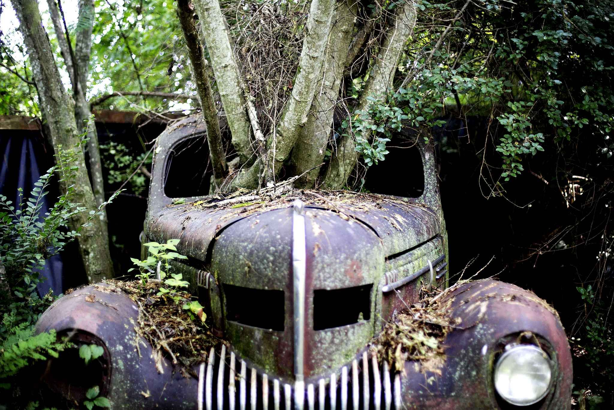 An old Chrysler Imperial 1937 in the largest cemetery of old cars ...