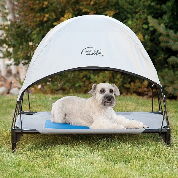 Cool Pet Cot Canopy Annahyldahl Waterproof Dog Bed Outdoor Dog Bed Cool Pets