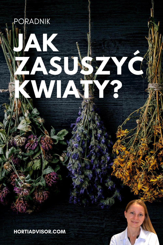 Jak Zasuszyc Kwiaty Poradnik Blog