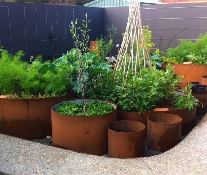 Corten Galvanised Zam Metal Garden Edging Tree Rings Pots Garden Beds Gumtree Australia Cockburn Ar Metal Garden Edging Sustainable Garden Garden Beds