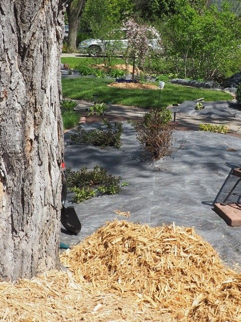 Don't lay landscaping fabric on the ground then apply