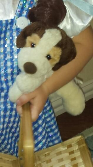 Lost Found Teddy Bear Cuddly Toy At Six Flags Over Texas Arlington Tx Teddy Cuddly Toy Teddy Bear