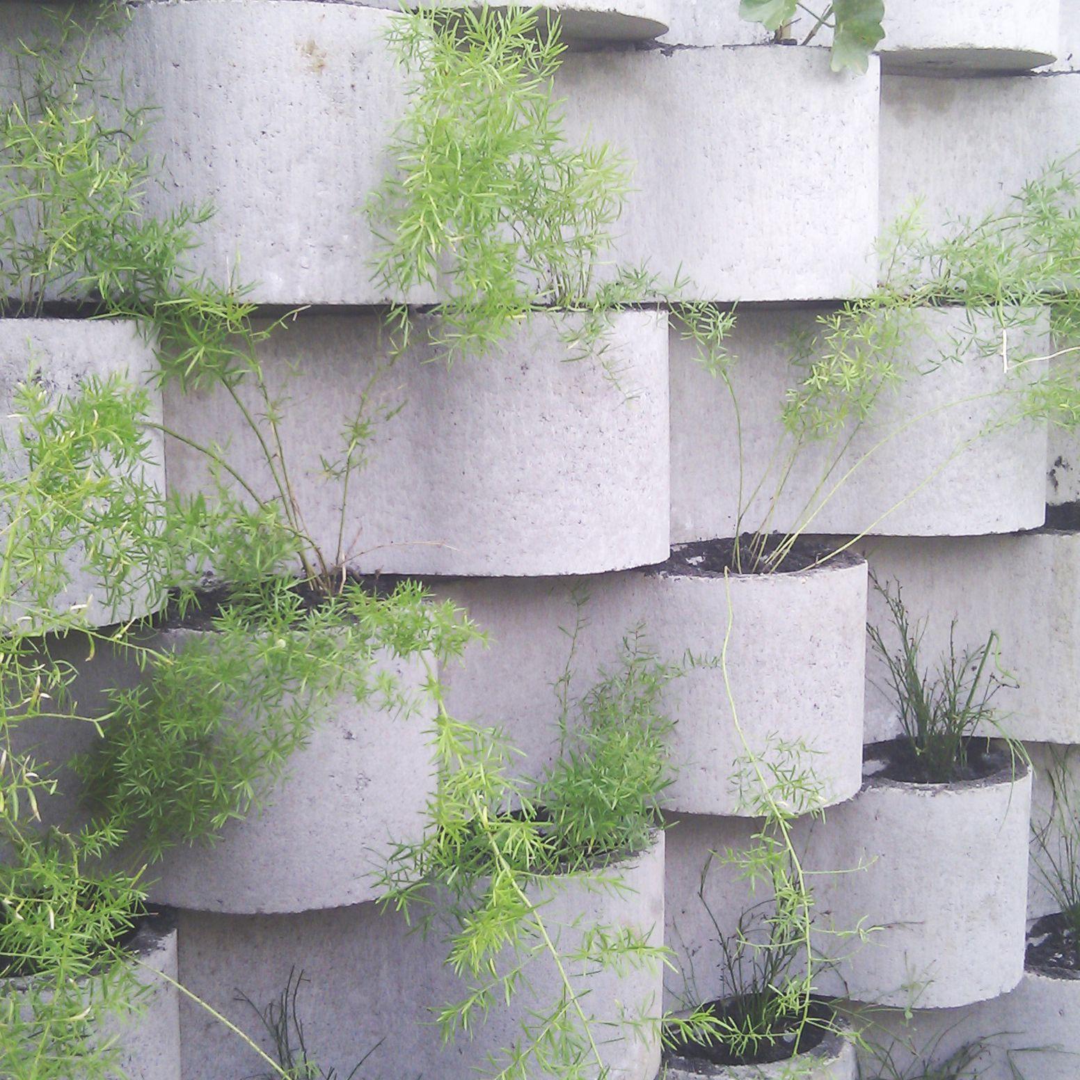 Green Wall Block Green Wall Vertical Green Wall Plant Wall