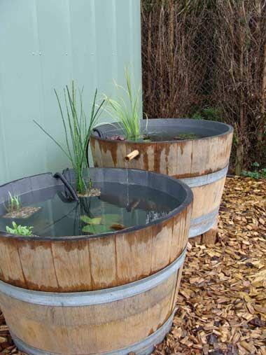 Bassins dans des demi tonneaux biogu a pinterest for Tonneau decoration jardin