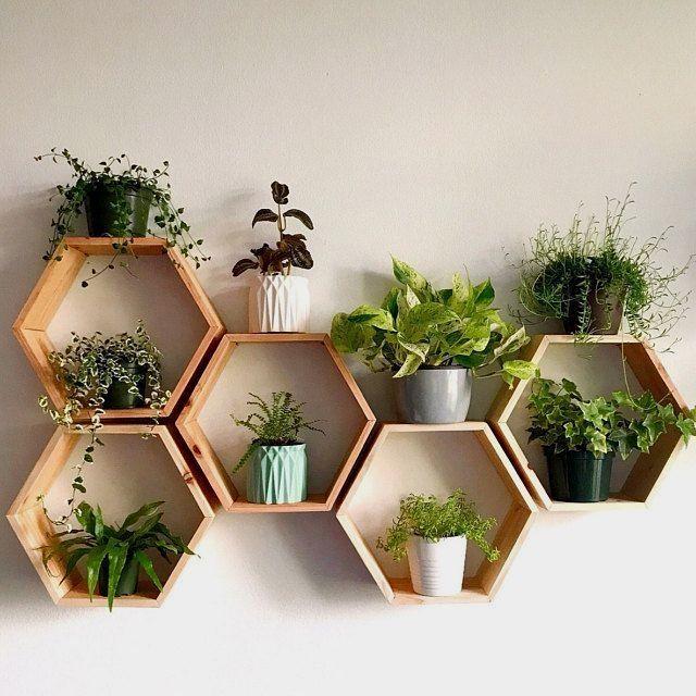 "Set of 6 Medium 2"" Deep Hexagon Shelves, Honeycomb Shelves, Floating Shelves, Geometric Shelves"