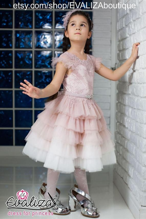 Powder Layered Skirt Flower Girl Dress Princess Girl Dress Birthday  Bridesmaid Satin Lace Party Ruff 73ca12b773a4